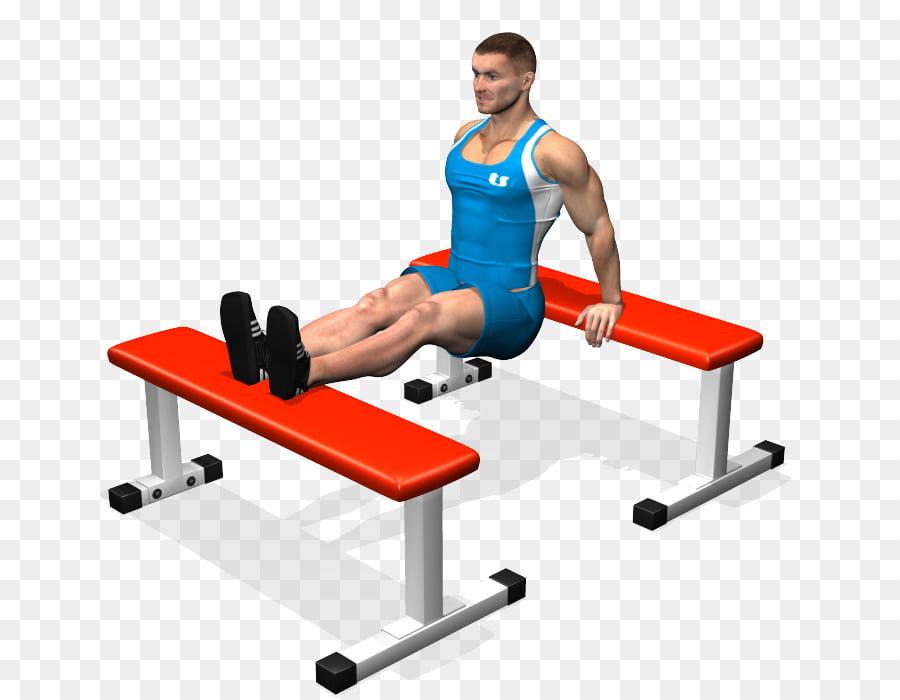 Extensiones de tríceps