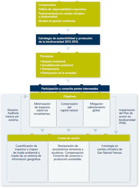 La FAF llevará a cabo una revisión post-implementación de la norma GASB