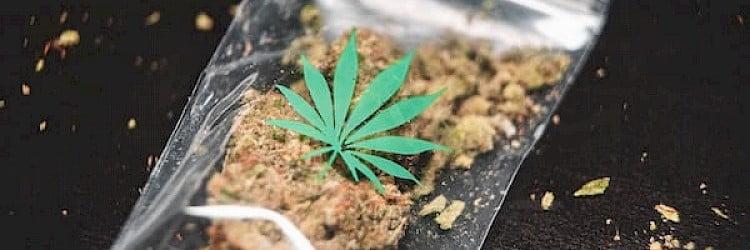 Sobre el cannabis y el crédito fiscal para la investigación y el desarrollo